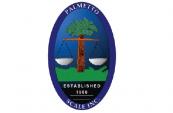 palmetto-icon-e1358861868891